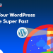 How to optimize WordPress Website for high speed